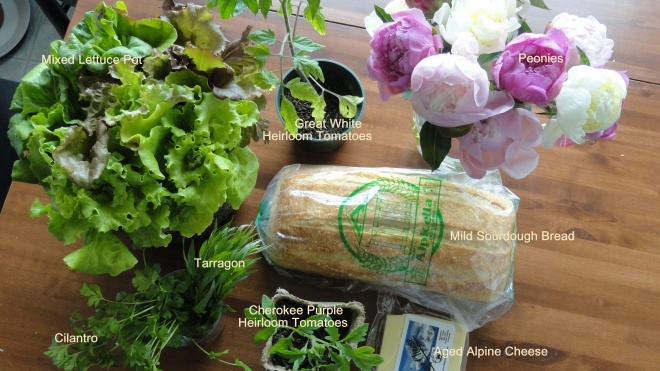 Farmers Market Report June 11 2011